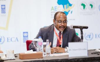 Nations urged to 'stop digging and exporting' Africa's raw materials