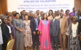 Key players in Guinea's economy will review their country's AfCFTA National Strategy