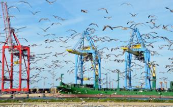Economie bleue : la CEA appelée en renfort pour une meilleure coordination des stratégies maritimes