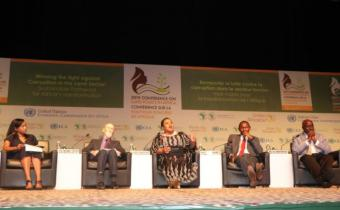 """Land policy in Africa: Expert panel calls for """"fair, efficient land management"""""""
