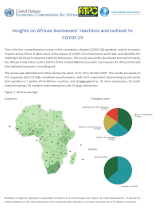Insights on African businesses' reactions and outlook to COVID-19