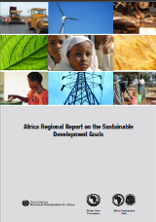 Report on the sustainable development goals for the North Africa subregion