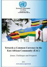 Towards a Common Currency in the East African Community(EAC)