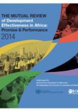The 2014 Mutual Review of Development Effectiveness in Africa