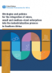 Strategies and policies for the integration of micro, small and medium-sized enterprises into the industrialization process in Southern Africa